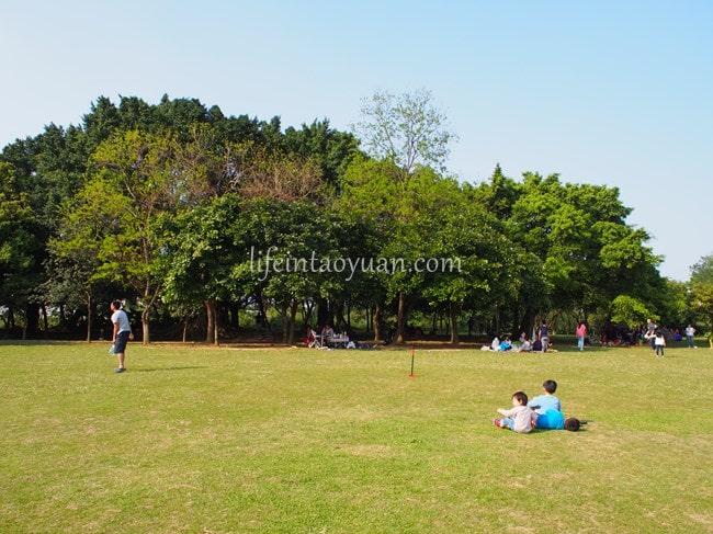 【八德】ピクニックにピッタリ!天気が良い日に行きたい、八德埤塘生態公園